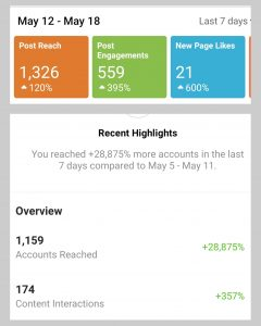 Social Media Marketing Stats for Northern Michigan Client