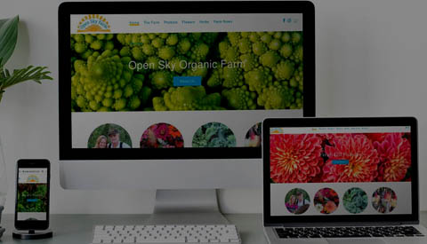 Abuzz Creative Buzz Shop Ecommerce Website